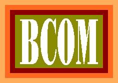 Scope of B.Com in Pakistan, BCom Subjects, Career, Eligibility & Tips