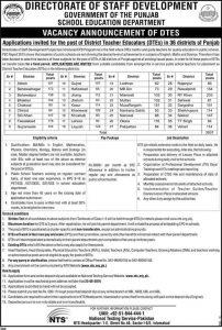 District Teacher Educators (DTEs) Jobs Punjab 2016, NTS Form, Result