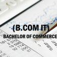 Scope Of B.COM IT In Pakistan