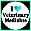 Scope of Veterinary Medicine in Pakistan, Career, Jobs, Degrees, Eligibility