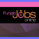 All Latest Govt Jobs in Punjab 2018, Full List, Apply Online Now