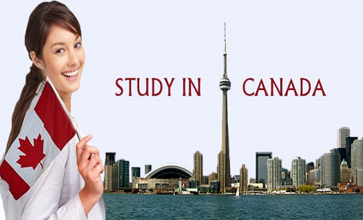 Canada Student Visa Guide For Pakistani Students