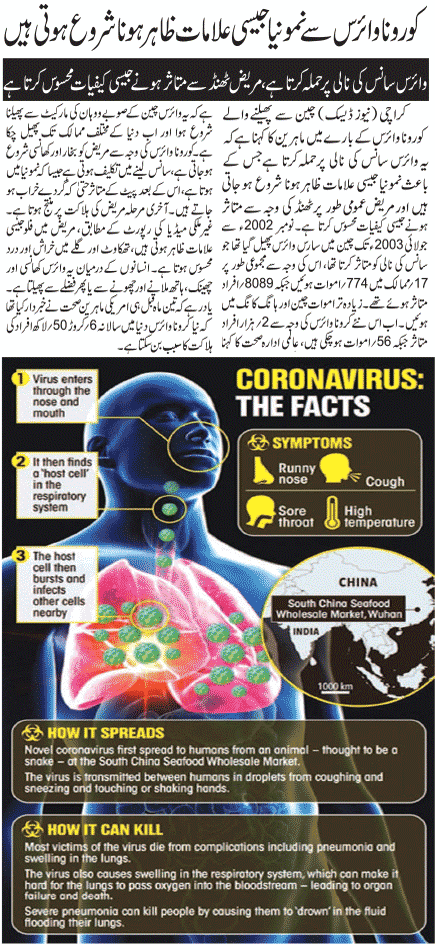 What is Coronavirus All About? Causes, Symptoms, Prevention, Treatment