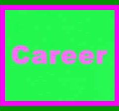 Career and Scope of Auditing in Pakistan
